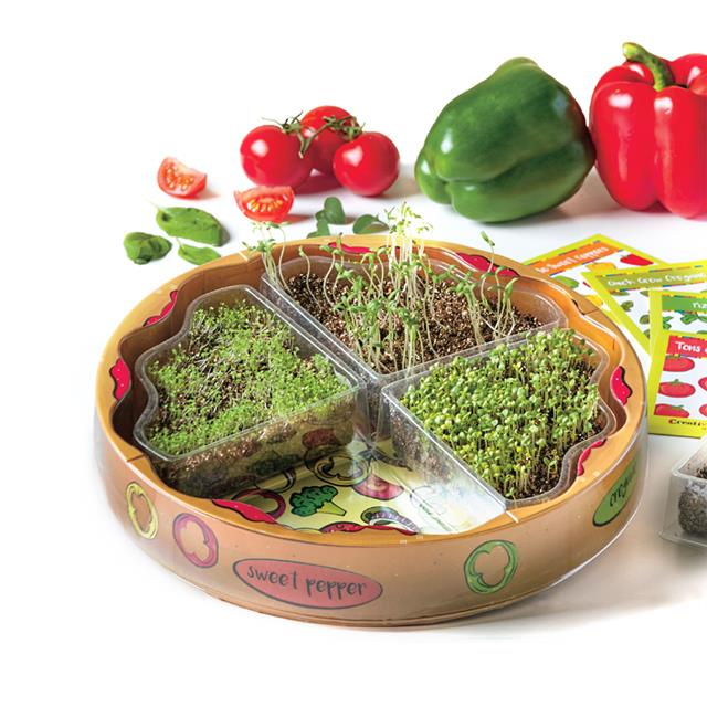 Creativity for Kids Plant Pizza