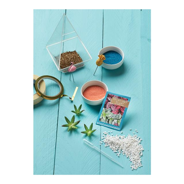 Craftivity Tropical Terrarium