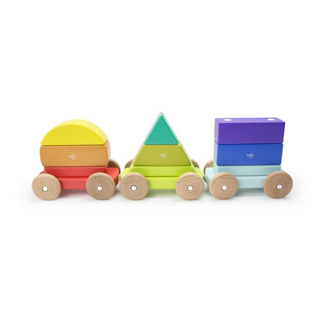 Tegu Magnetic Shape Train