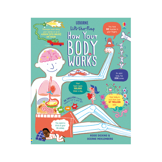 Usborne Lift-the-Flap: How Your Body Works
